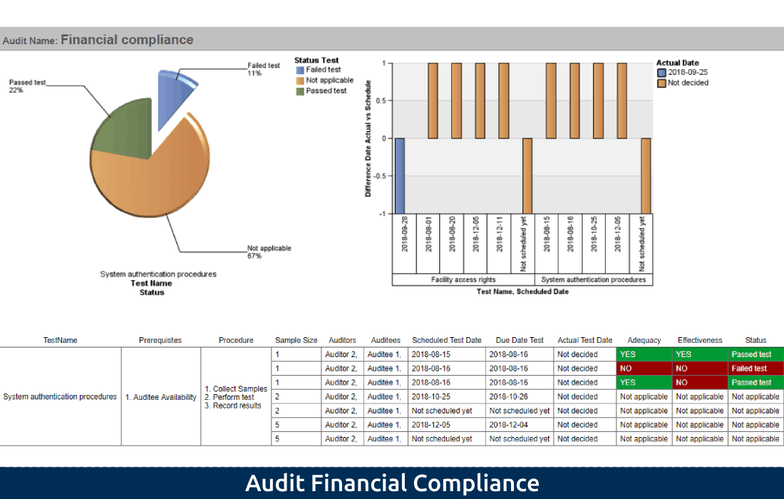 2-4 Audit Financial Compliance