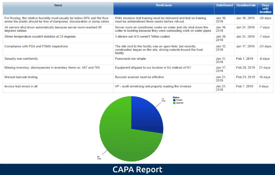 3-3 CAPA Report